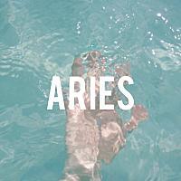 Aries님의 프로필 사진