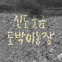진도울금토박이농장님의 프로필 사진