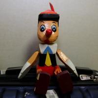 피노키오님의 프로필 사진
