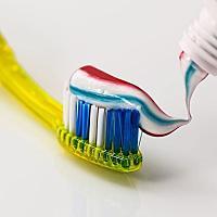 치아보험님의 프로필 사진