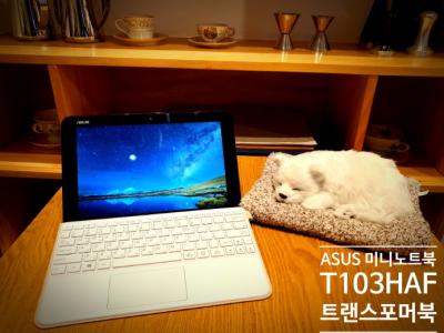 ASUS 미니노트북 T103HAF 트랜스포머 북 Mini 휴대성을 위한 투인원 노트북