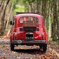 자동차보험님의 프로필 사진