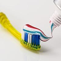 치아보험비교님의 프로필 사진