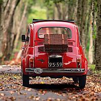 자동차보험운전자보험님의 프로필 사진