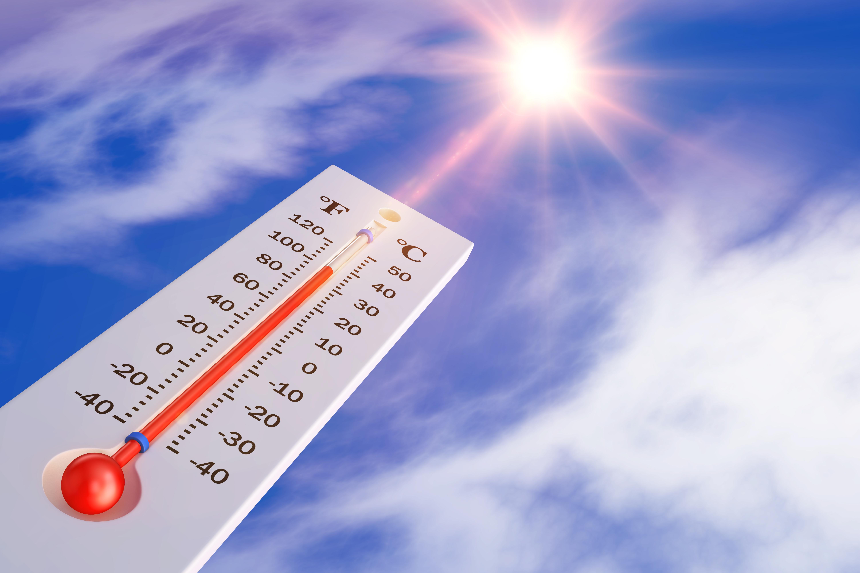 뜨거운 태양으로 폭염을 이긴다고?