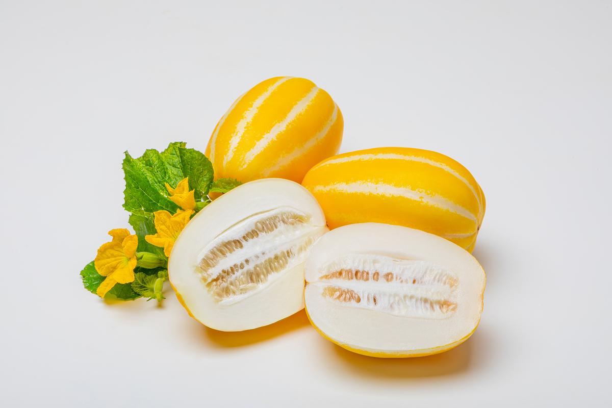 더위에 지친 여름, 입맛을 돋우는 제철음식 먹고 힘내세요!