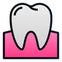 유아 치아보험님의 프로필 사진